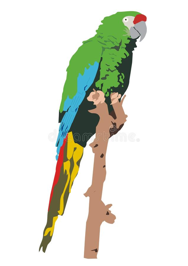 Download Mexican Military Macaw (Ara Militaris Mexicana) Royalty Free Stock Photography - Image: 17143337