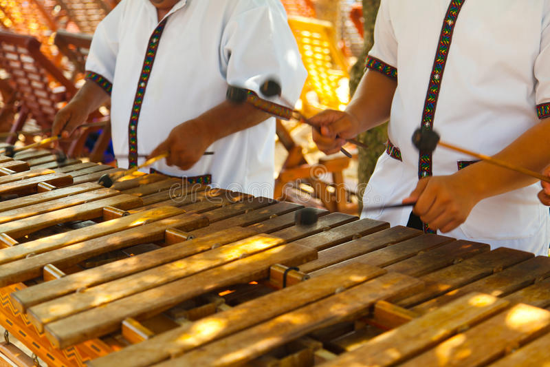 Mexican musicians playing a wooden marimba stock photo