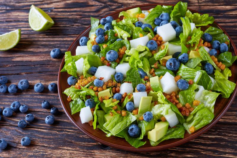 Mexican Salad with jicama and berries royalty free stock photo