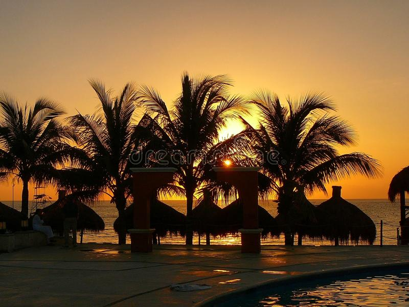 Mexican sunset through the trees royalty free stock photos