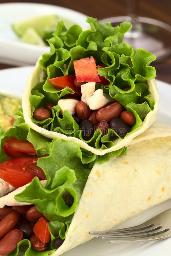 Download Mexican Tortilla Wrap Royalty Free Stock Image - Image: 21182296
