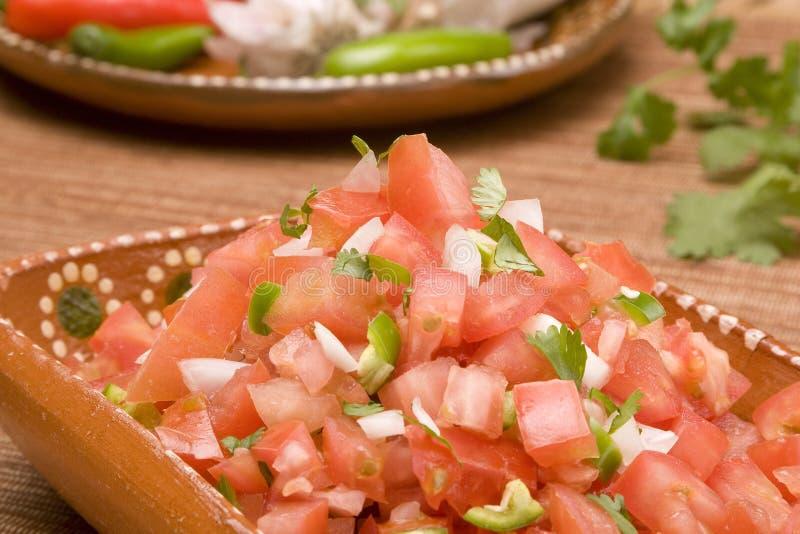 Mexicana van Salsa stock afbeelding