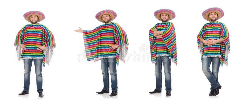 Mexicano engra?ado isolado no branco fotos de stock royalty free
