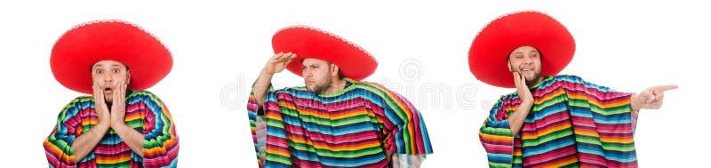 Mexicano engra?ado isolado no branco fotografia de stock royalty free