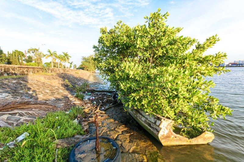 Mexicansk fiskebåt royaltyfri bild