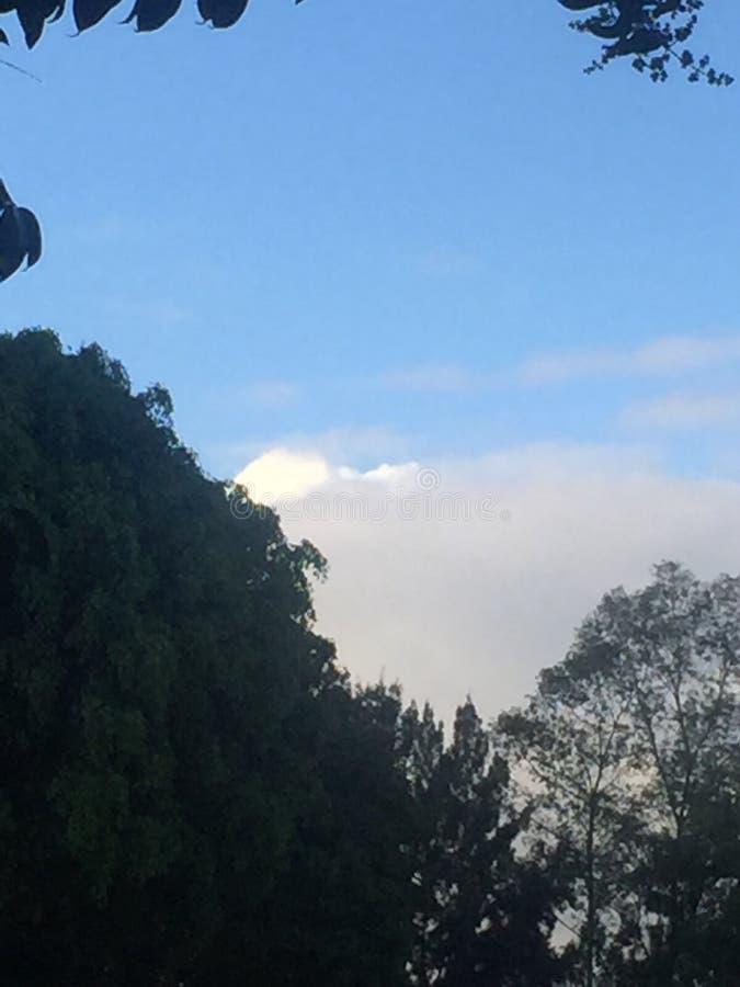 Mexicansk himmel royaltyfria bilder