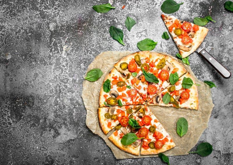 Mexicansk pizza med örter royaltyfria foton