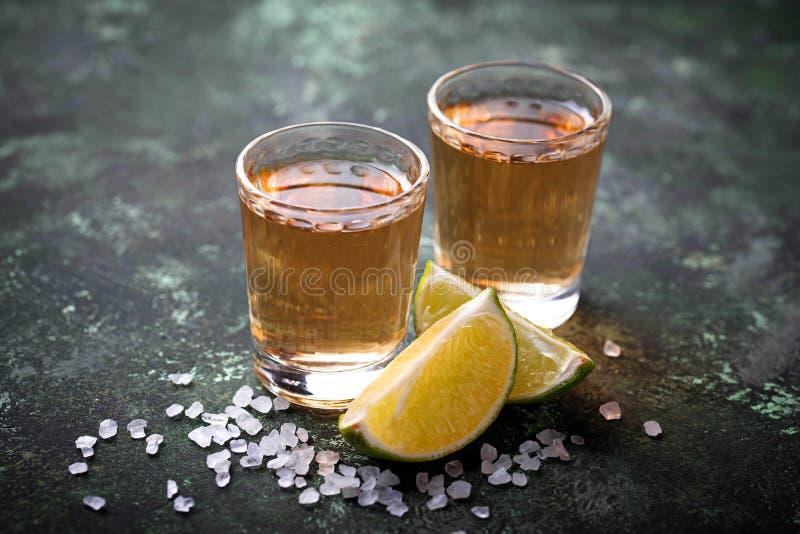 Mexicansk Tequila med salt och limefrukter royaltyfri fotografi