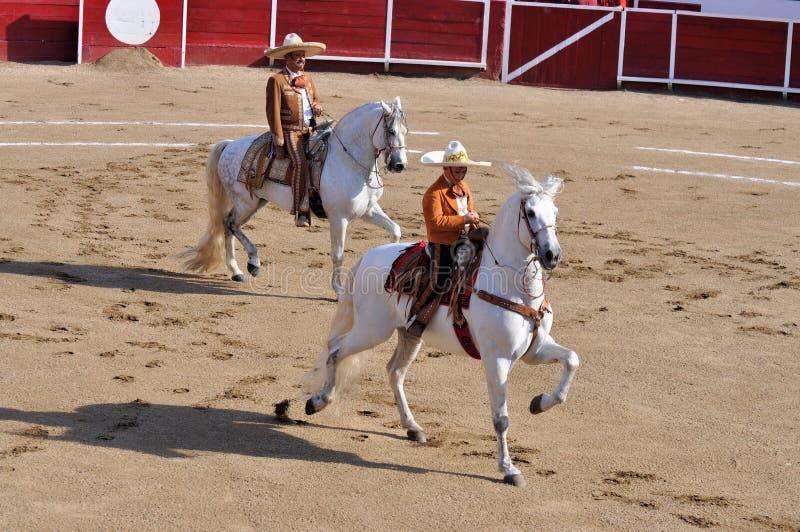 Mexicanska Charros royaltyfri fotografi