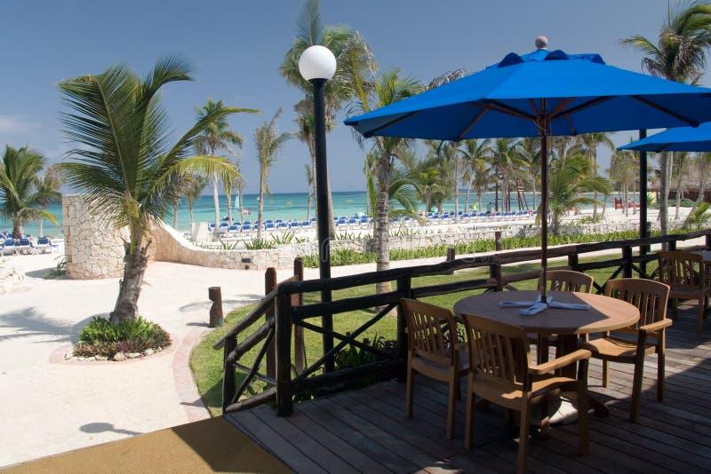 Download Mexico beach cafe stock image. Image of umbrella, grass - 1327687