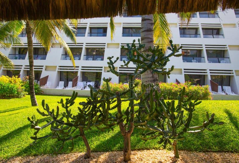 Mexico Cancun Härlig natur av Mexico Palm parkerar av Cancun den storslagna pyramiden som underhåller komplexet royaltyfri fotografi