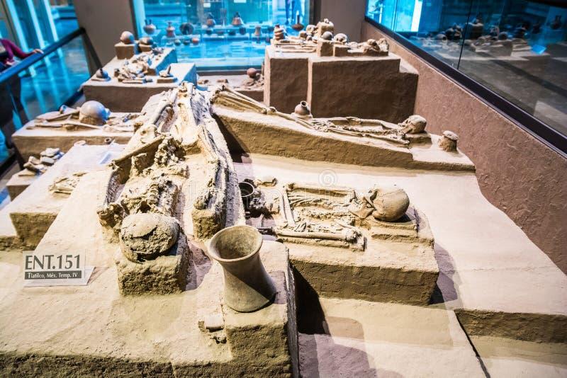 Mexico City, Mexico - November 1, 2018. National Museum of Antropology. Museo Nacional de Antropologia royalty free stock image