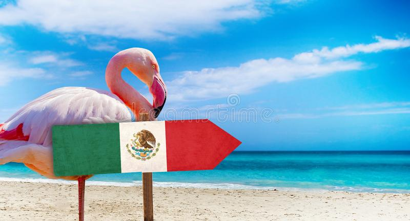 Mexico flag on wooden table sign on beach background with pink flamingo. There is beach and clear water of sea and blue sky in the. Background. It is tropical royalty free stock photos
