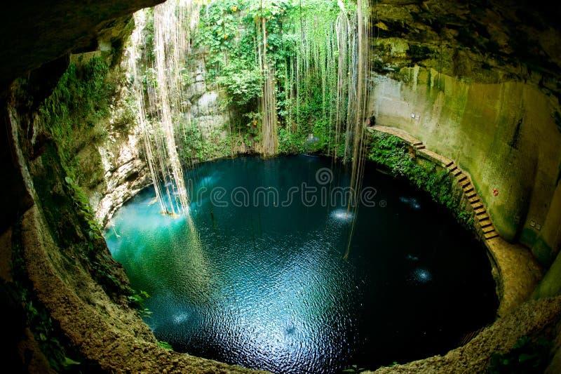 Mexico.Ik-Kil Cenote stock afbeelding