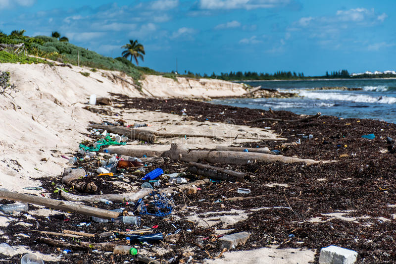 Download Mexico Ocean Pollution Problem Plastic Litter Stock Image - Image: 83724129