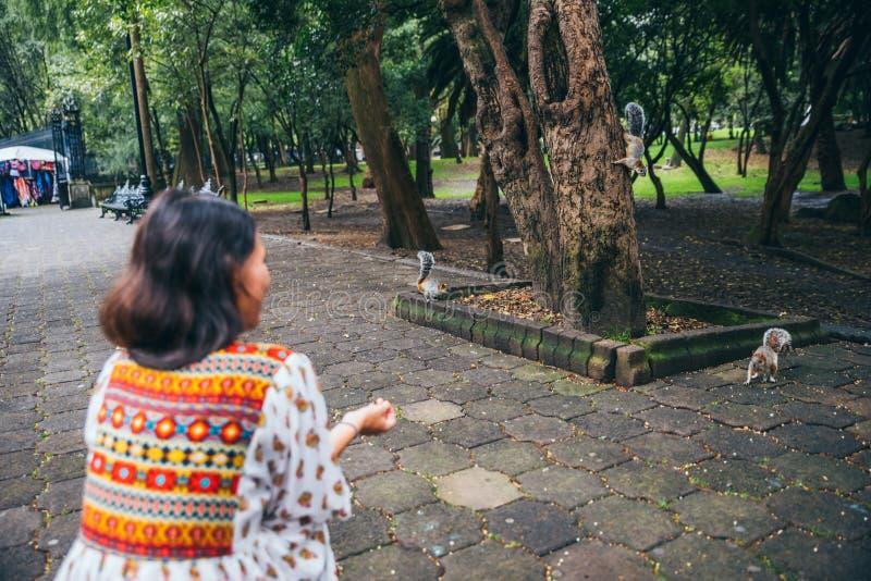 MEXICO - SEPTEMBER 29: Turist- hålla ögonen på en grupp av ekorrar för arkivbilder