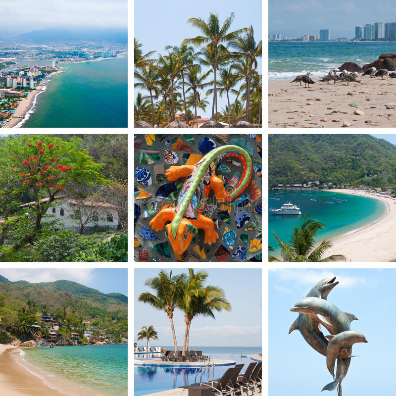 Download Mexico travel collage stock photo. Image of iguana, green - 25682254