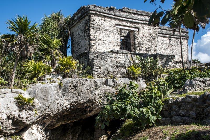 Mexico yucatan Tulum maya fördärvar royaltyfri bild
