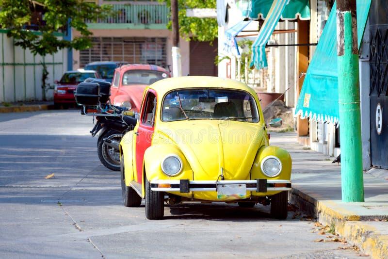 Mexikan Volkswagen royaltyfria foton