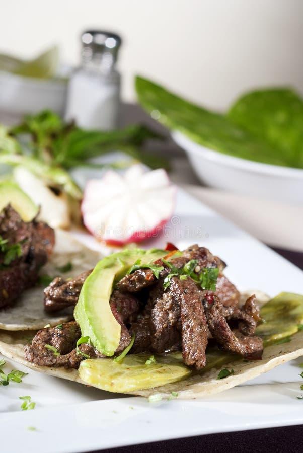 Mexikanischer Feinschmecker begleitet von der Avocado stockfotografie