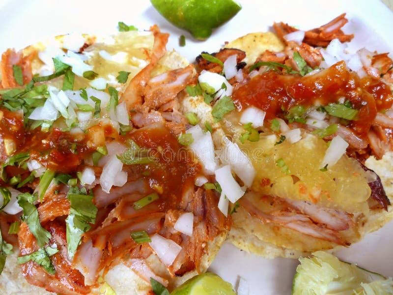 Mexikanischer Nahrung-Schweinefleisch Tacos lizenzfreie stockfotografie