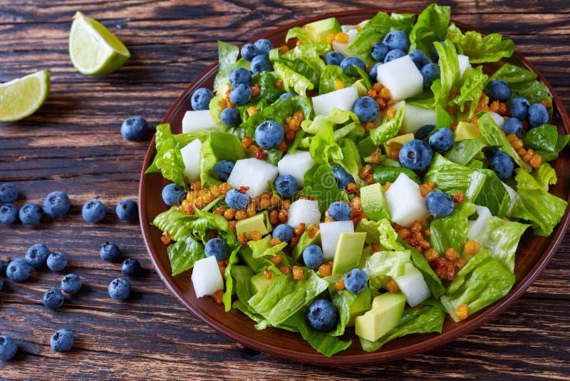 Mexikanischer Salat mit jicama und Beeren lizenzfreies stockfoto