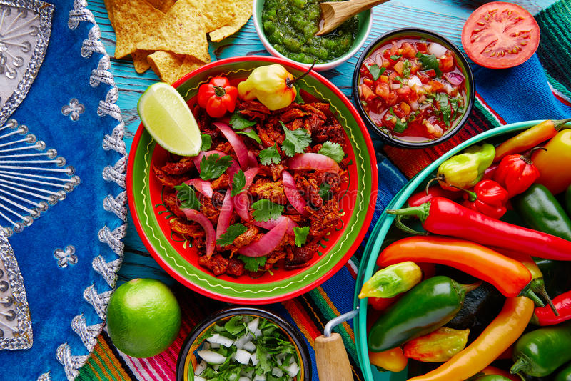 Mexikanisches Lebensmittel Cochinita Pibil mit roter Zwiebel lizenzfreie stockbilder