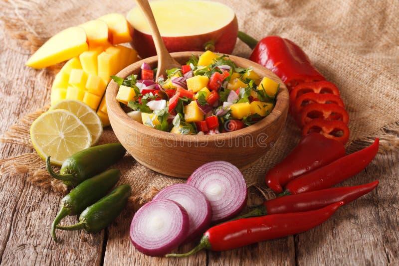 Mexikanisches Lebensmittel: Salsa mit Mango, Koriander, Zwiebeln und Pfeffer Clo stockfotos