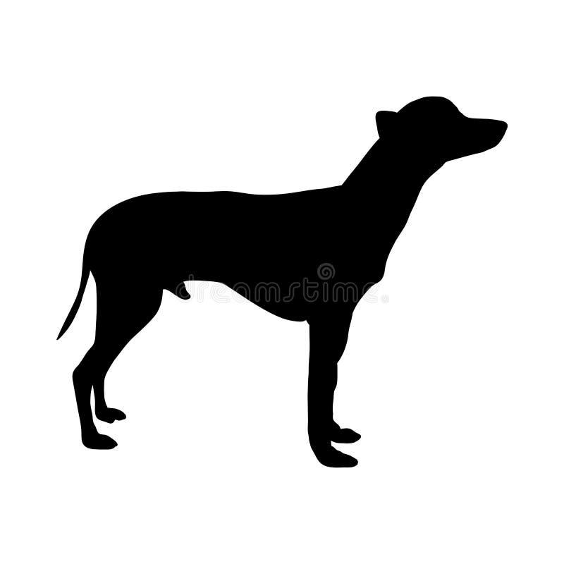 Mexikanisches nacktes Hundeschattenbild vektor abbildung
