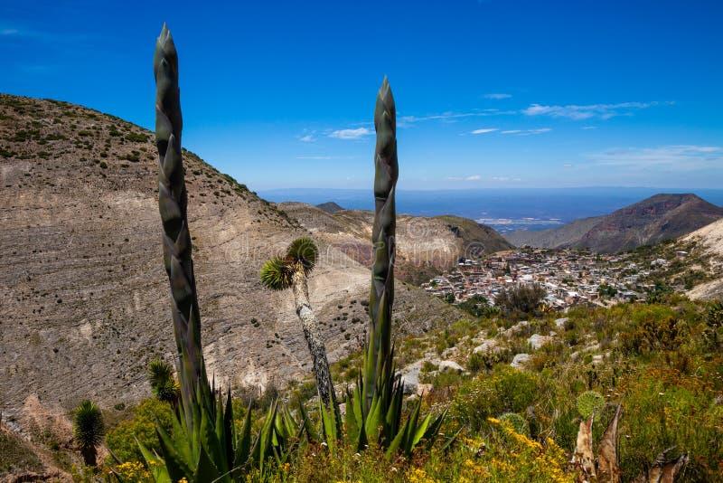 Mexikanskt landskap med byn Real de Catorce royaltyfria foton