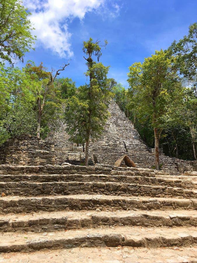 Mexiko, auf dem Weg zur Coba-Pyramidenbesteigung lizenzfreie stockfotos