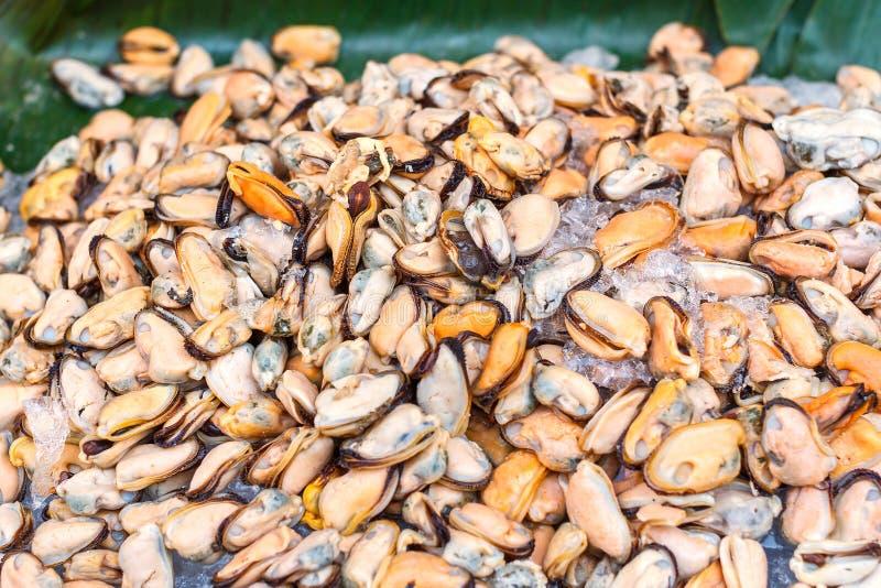 Mexilhão no mercado do marisco no fundo da folha do gelo e da banana imagens de stock royalty free