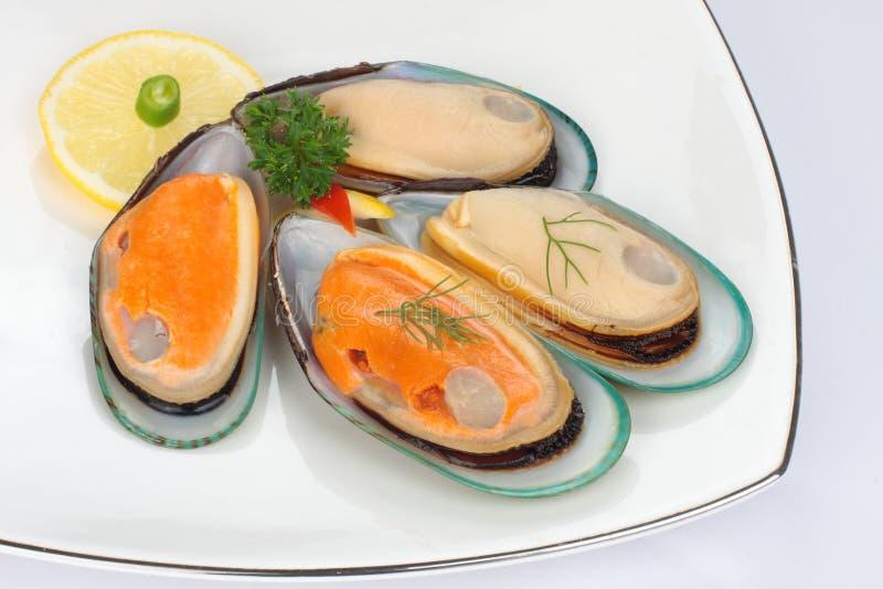 Mexilhões com shell fotografia de stock royalty free