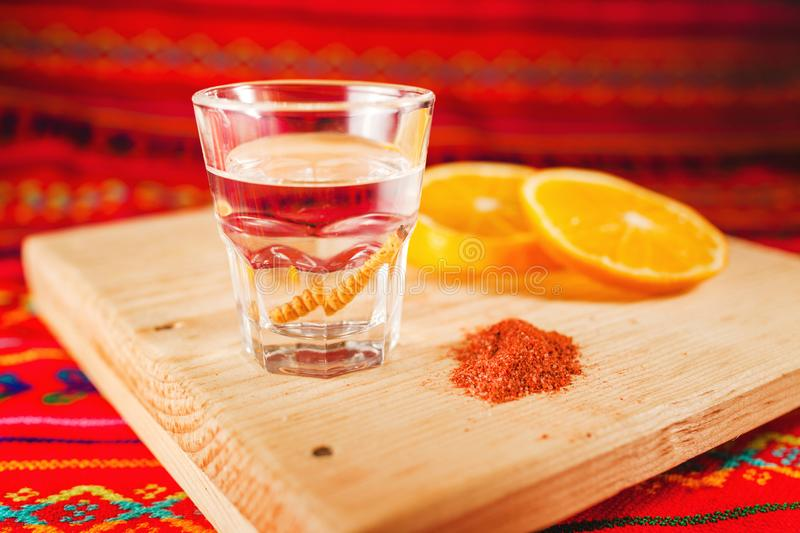 Mezcal mexican drink worm salt with orange slices in mexico royalty free stock image