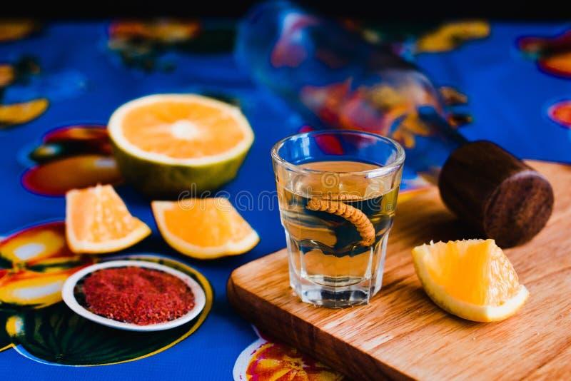 Mezcal schoot met Spaanse peperzout en agaveworm, Mexicaanse drank in Mexico royalty-vrije stock afbeeldingen