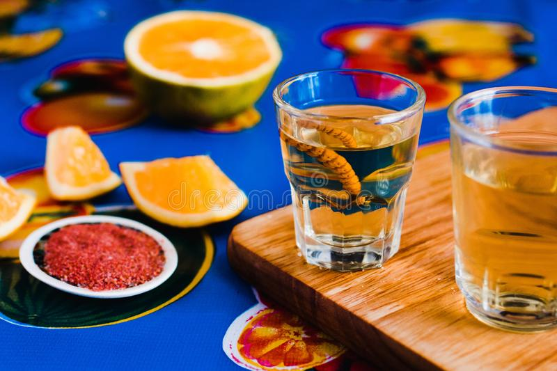 Mezcal shot with chili salt and agave worm, mexican drink in mexico royalty free stock image