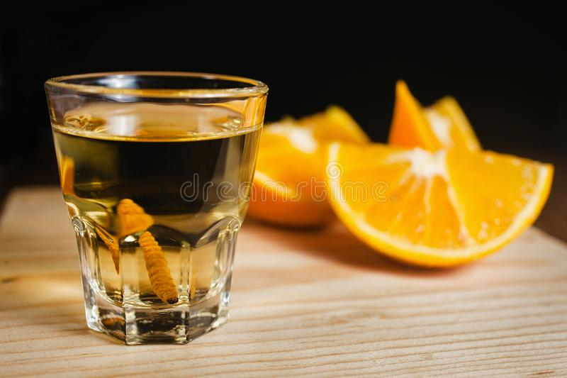 Mezcal shot mexican drink with orange and worm salt in oaxaca mexico royalty free stock photography