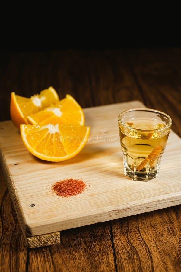 Mezcal tiró la bebida mexicana con la sal de la naranja y del gusano en Oaxaca México imagenes de archivo