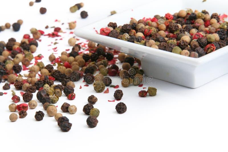 Mezcla de granos de pimienta coloridos imagen de archivo libre de regalías