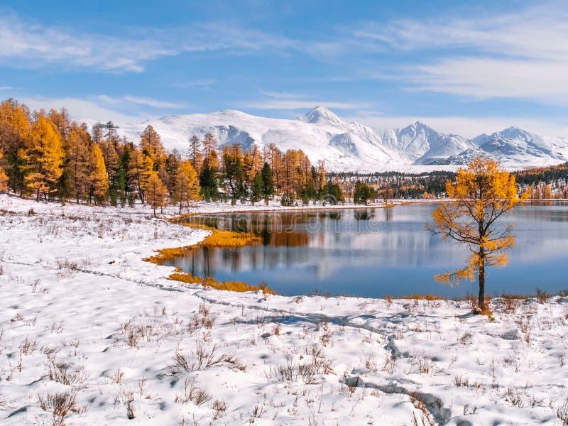 Mezcla de otoño y de invierno en las montañas imagen de archivo