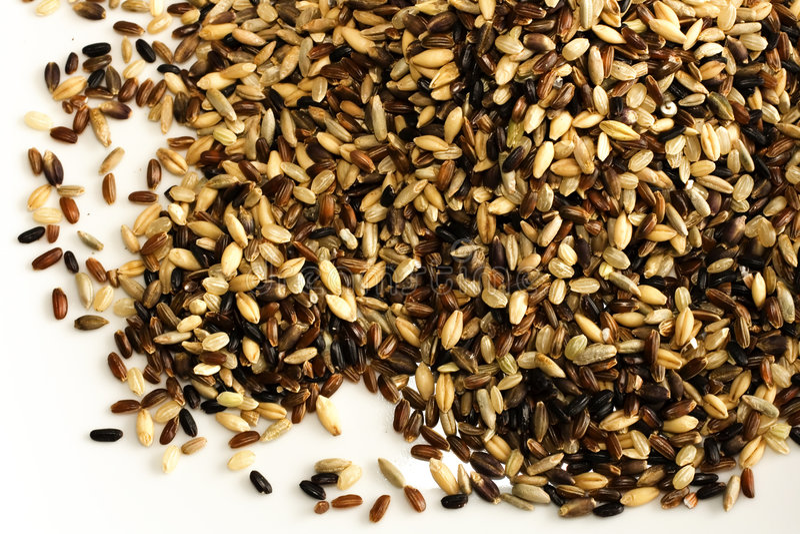 Mezcla multi del arroz del grano aislada en blanco foto de archivo libre de regalías