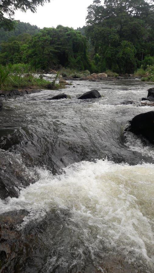 Mezclas del río con otras rocas y arbustos naturales de los árboles fotos de archivo libres de regalías