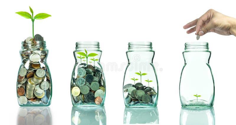 Mezcle las monedas y la semilla en blottle claro en el fondo blanco, negocio fotografía de archivo