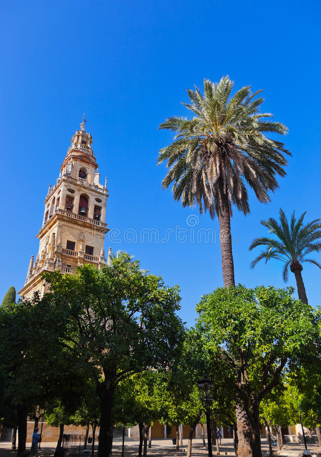 Mezquita de toren van de Kathedraal van de Moskee - Cordoba Spanje royalty-vrije stock foto
