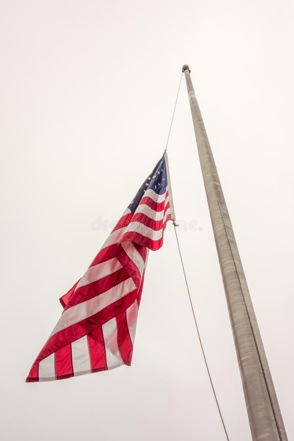 Mezzo concetto della bandiera americana dell'albero un simbolo degli Stati Uniti fotografie stock