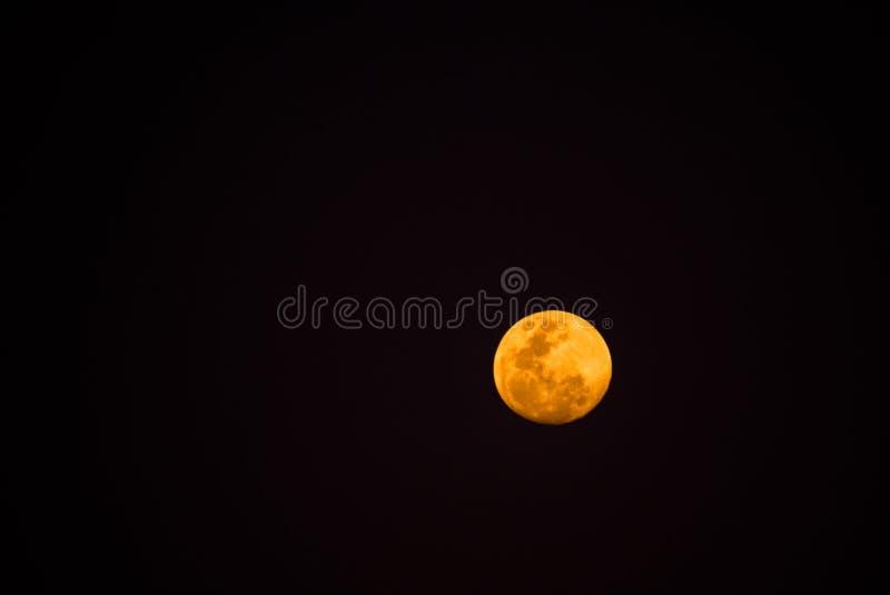 Mezzo giallo della luna piena della notte scura, luminoso e bello fotografia stock libera da diritti