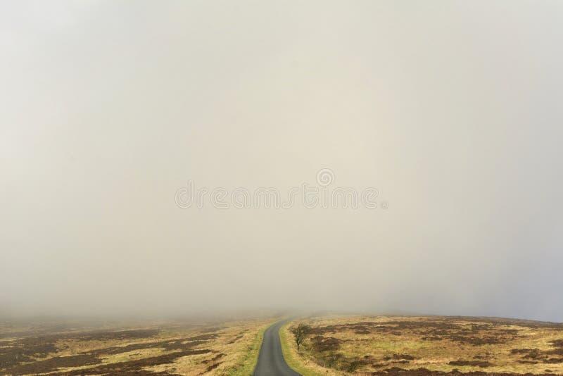Mgła bank na Moorland zdjęcia stock
