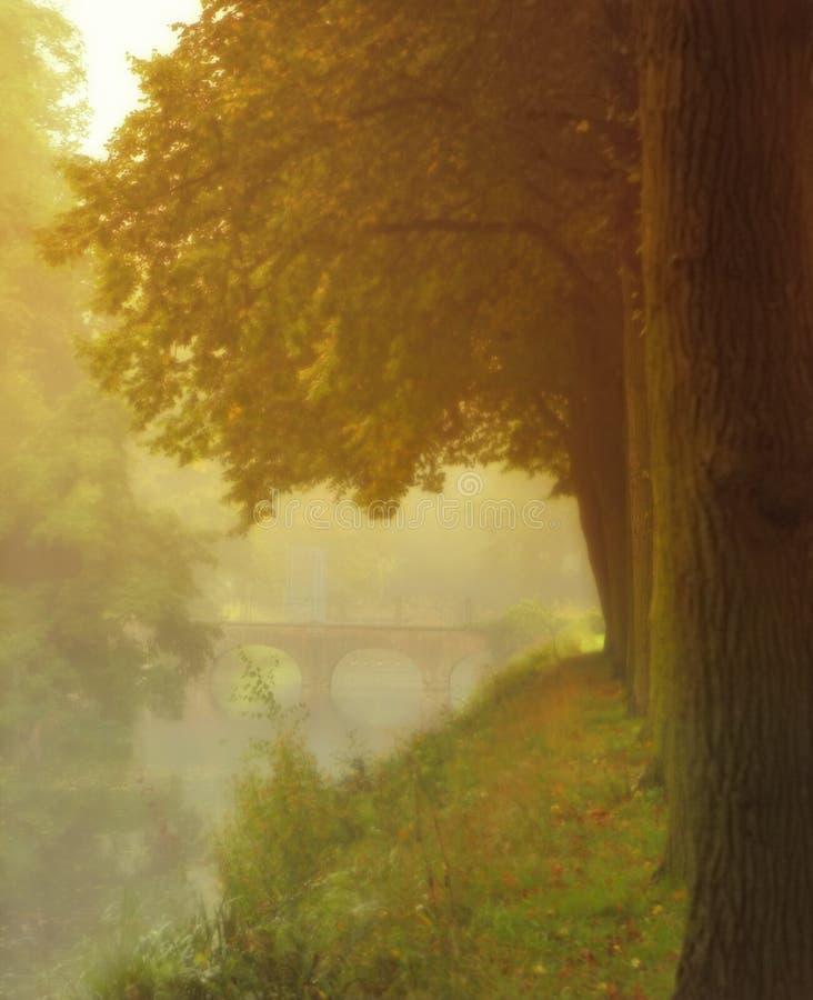 mgła bridge zdjęcie stock