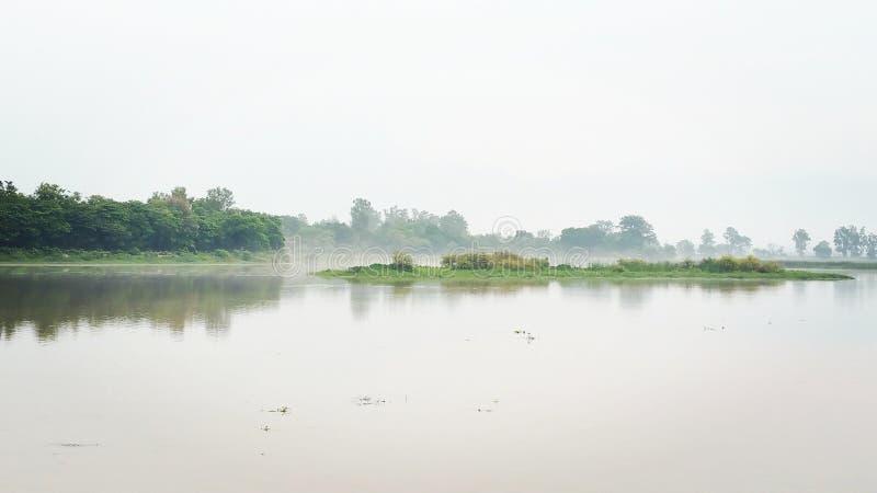 Mgła brzeg jeziora zdjęcia stock