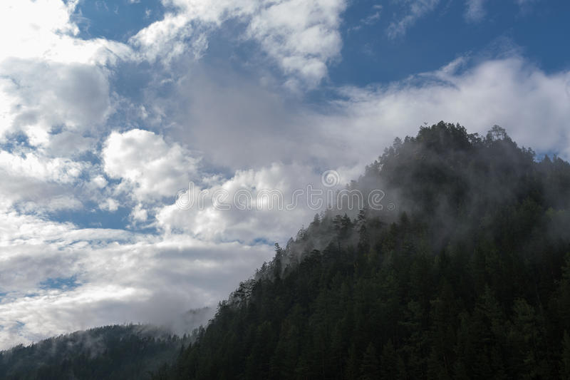 Mgła i chmury nad tajgi wzgórzem z sosnami obraz stock